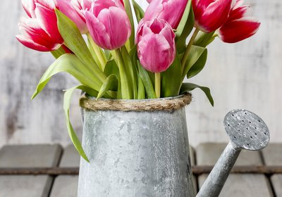 Spring into Spring with new Décor