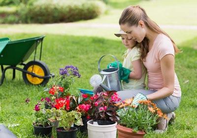 Why You Should Start a Springtime Garden