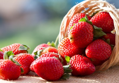 August Trivia: Which Local Florida City is Known For Their Strawberries?