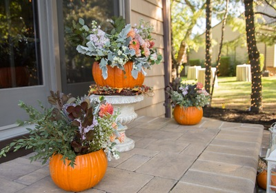 Designing Curb Appeal with Fall Flair