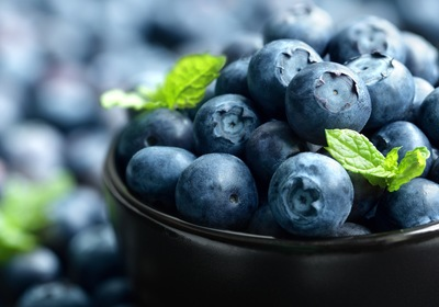 Blue Beauty: Celebrating the 4th Annual Mount Dora Blueberry Festival