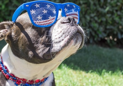 7 Tips for Fourth of July Fun in Lake County