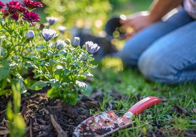 3 Tips to Get Your Yard Ready for Spring